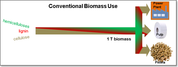 Conventional biomass use