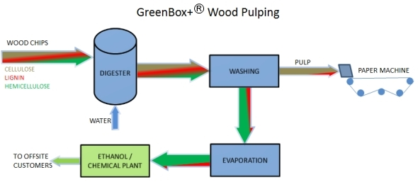 GreenBox+ wood pulping