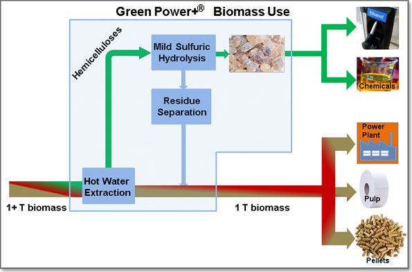 Green Power + biomass use